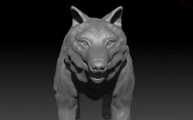 Wolf Front View - Stu