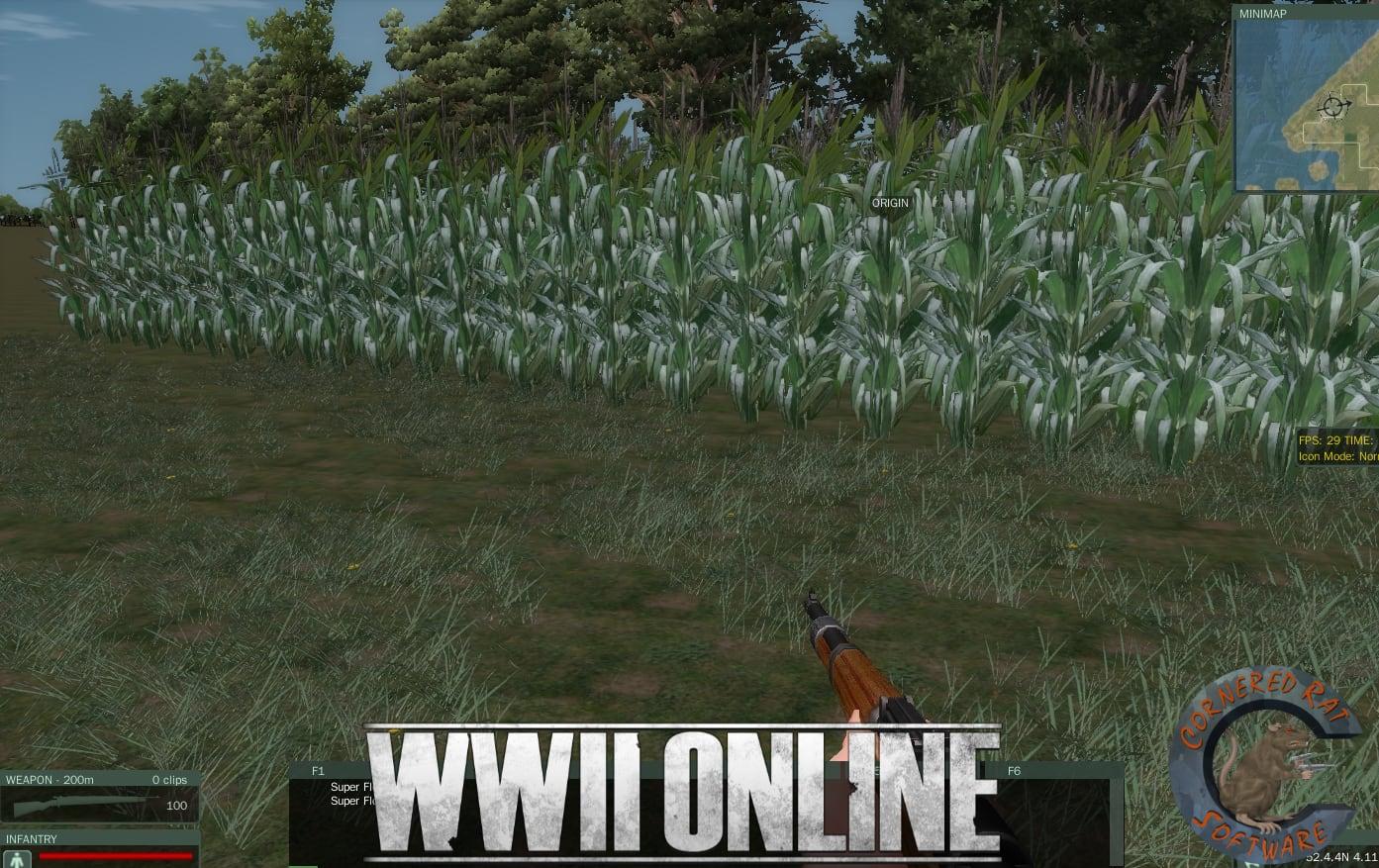 20 corn