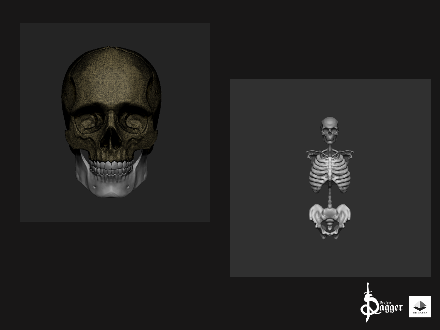 Work in progress Skeleton as enemy and neutral mobs