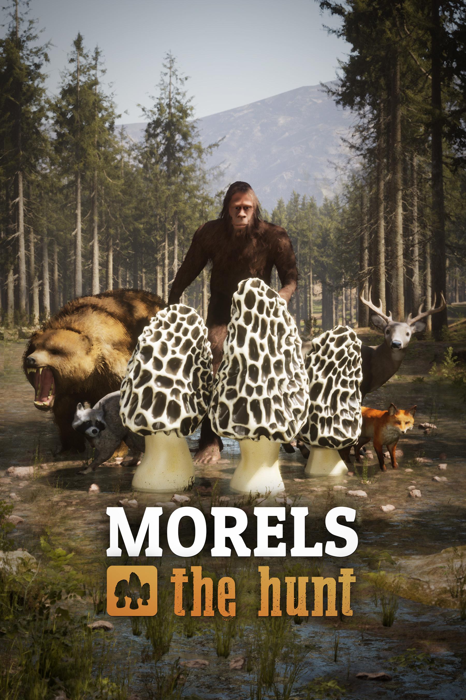 Morels Box Art