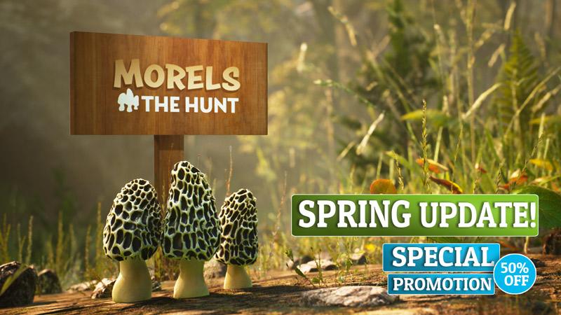Morels Spring Update Header