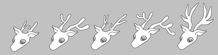 3 heads 2