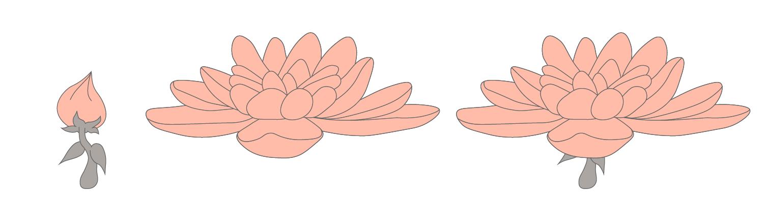 5 final flower total