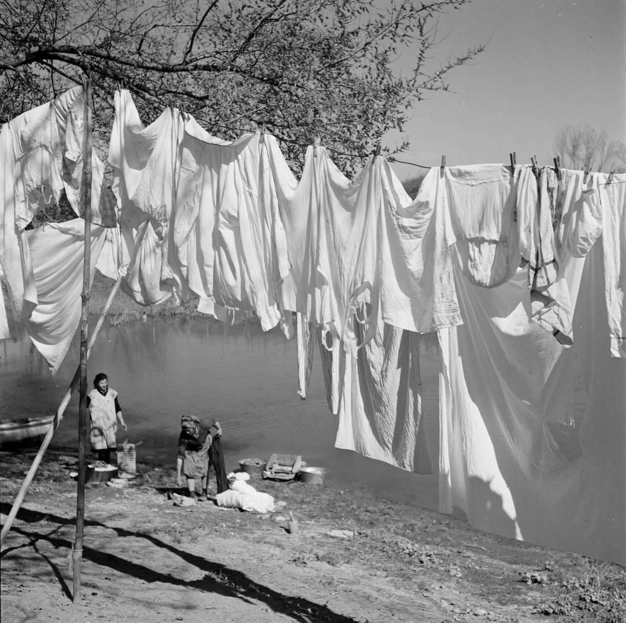 lago lavar roupa