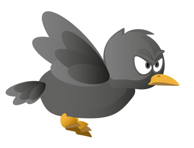 birdv3