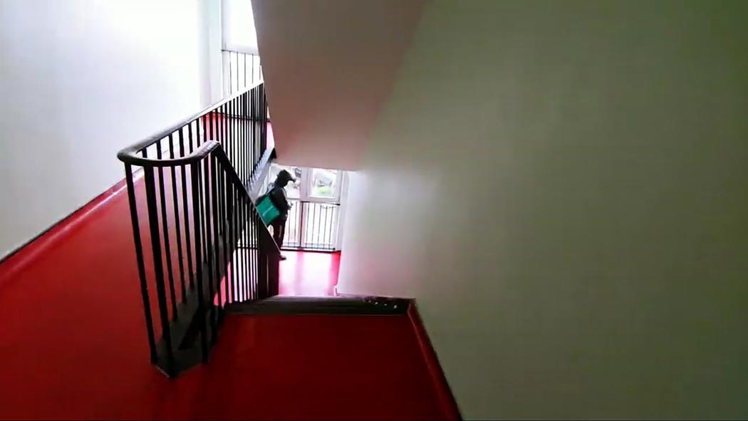 OneStep Ladder