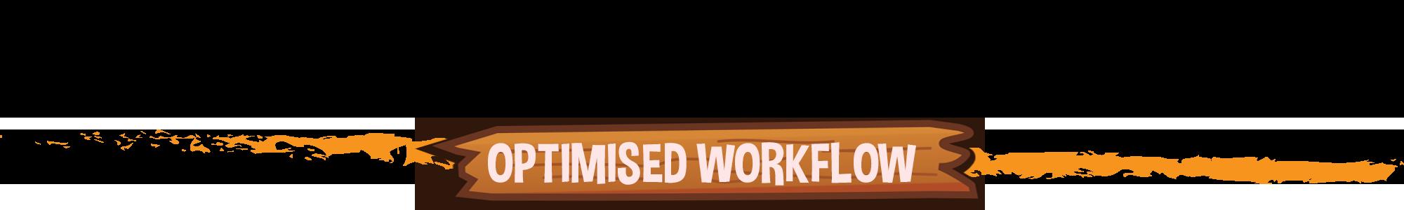 Optimised Workflow