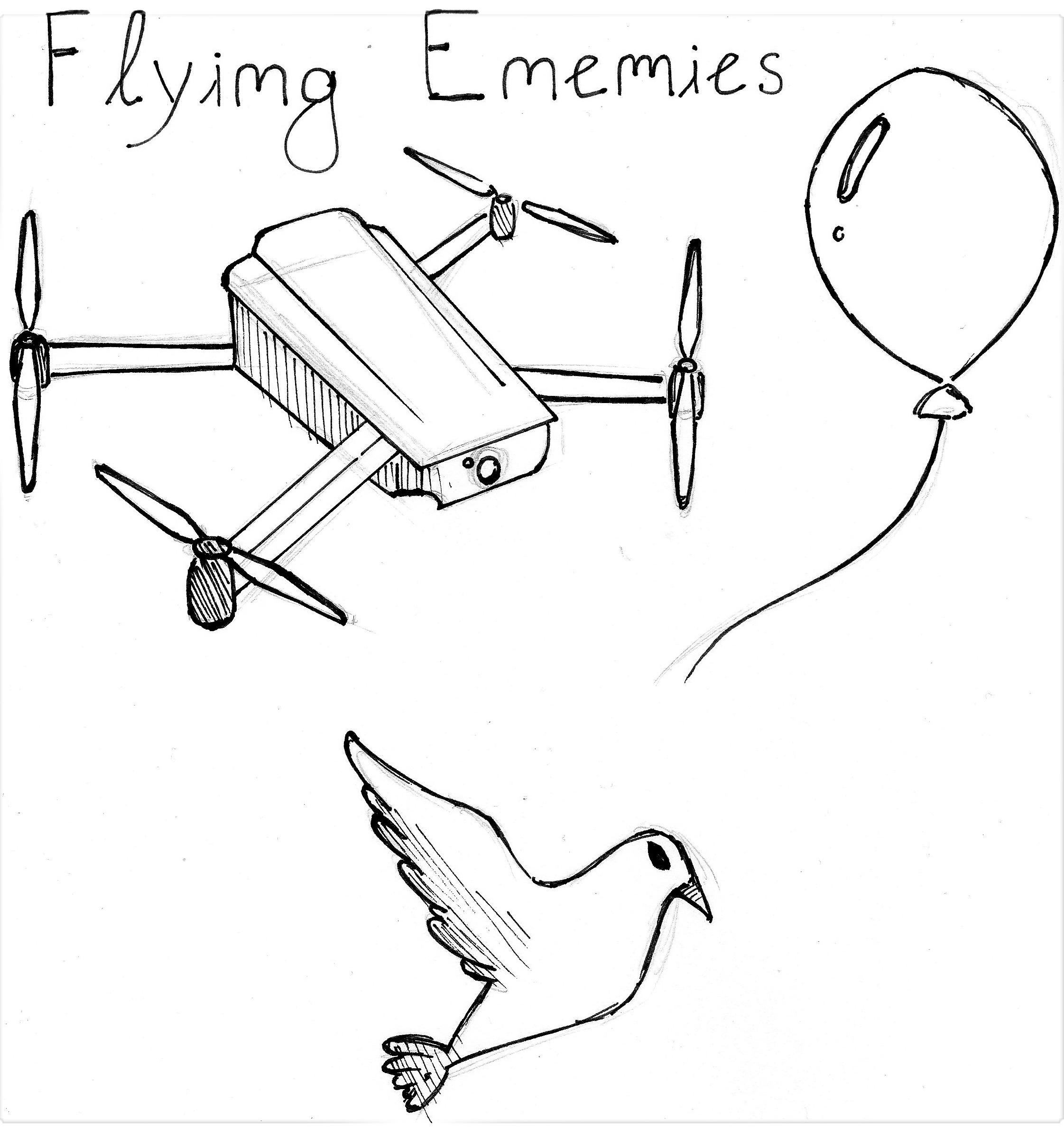 Possible Flying Enemies