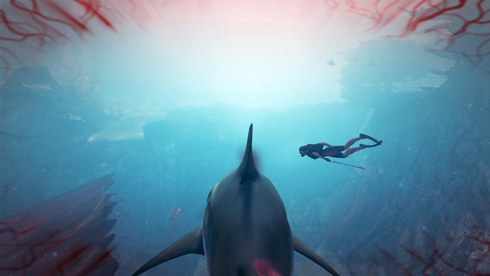 Screen_Diver.jpg