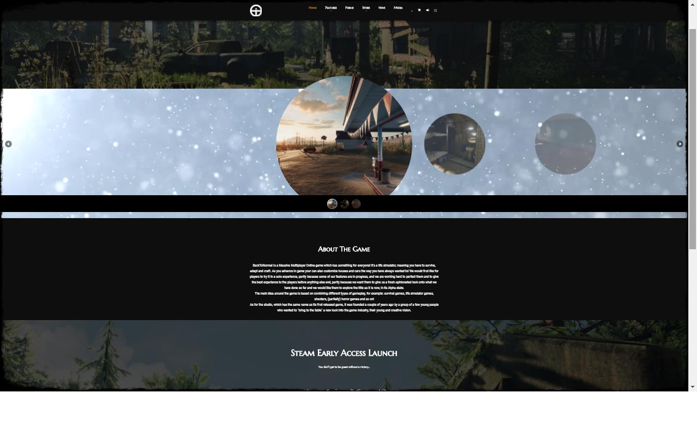 bannerwebsite.png