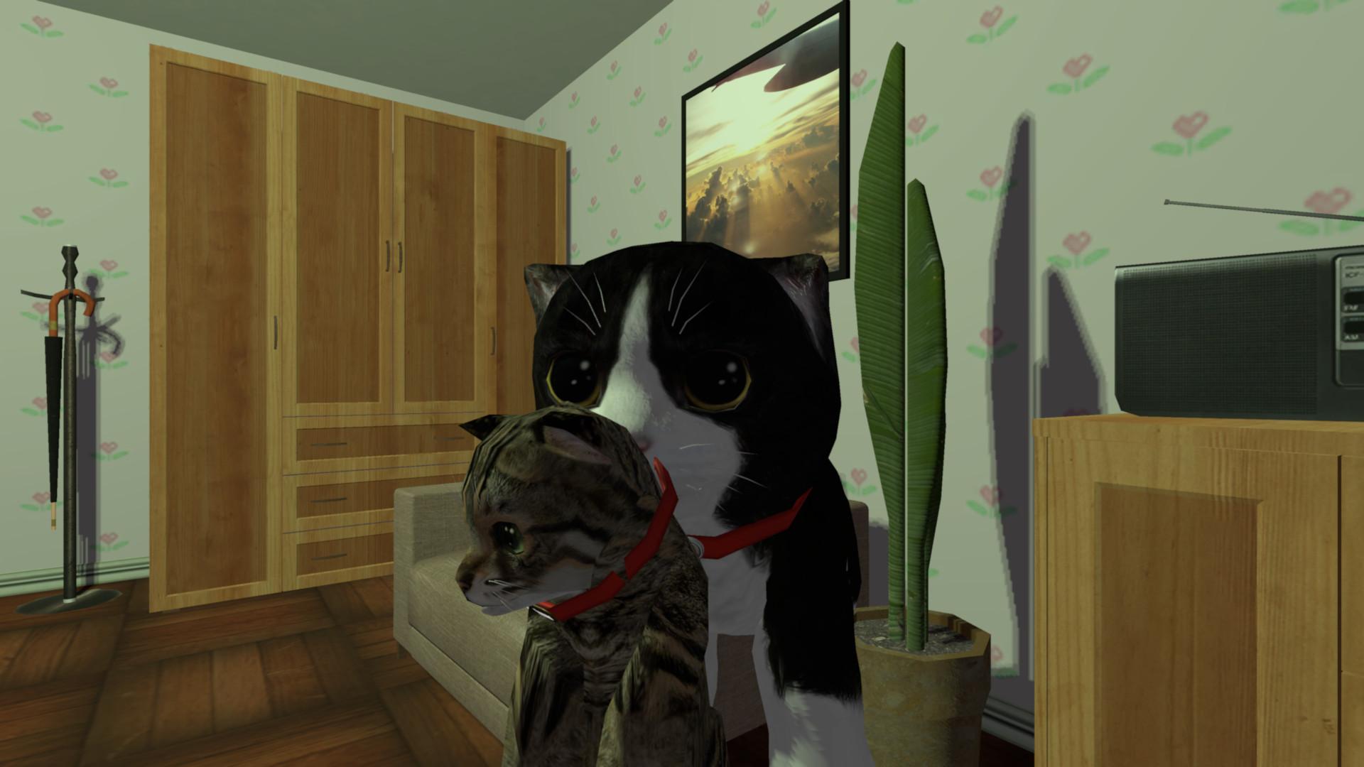 kitten-carried_kittenroom.jpg
